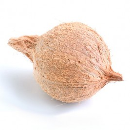Coconut for Pooja (Puja)