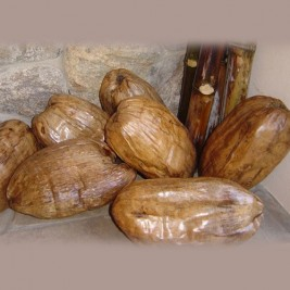 Varnished Coconuts for Decoration (extra-large)